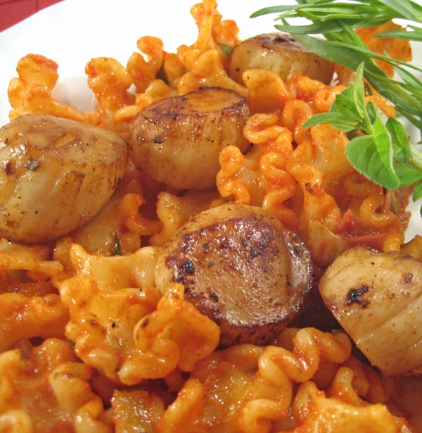 Scallops on Tomato Tarragon Pasta