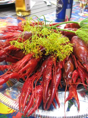Crayfish_&_crown_dill_3