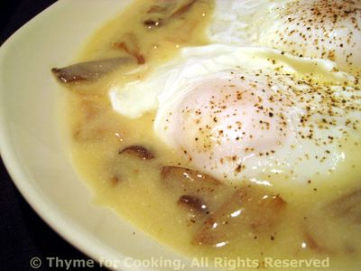Poached Eggs in White Mushroom Sauce