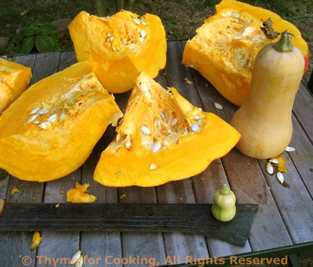 Pumpkin and butternut squash